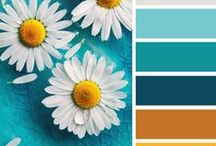 Colour, Colour, Colour!! / Colour palettes for inspiration. (also known as color, color, color)
