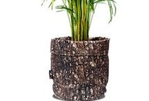 Indoor Plants, Planters & Pots / How To Dress up your Indoor Plants and Pots in Style