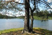 Luontokuvia Suomesta / Kameran kanssa luonnossa
