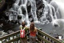 Laurentides / Découvrez les Laurentides et ses attraits touristiques. Vous pourrez ajouter ses activités à votre itinéraire lors de vos vacances dans les Laurentides!