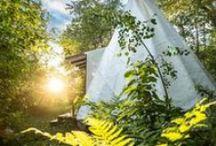 Gaspésie / Découvrez la Gaspésie et ses attraits touristiques. Vous pourrez ajouter ses activités à votre itinéraire lors de vos vacances en Gaspésie!