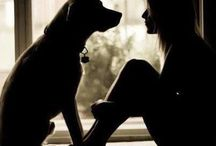 Must Love Dogs / I love dogs and everything about them.  If you are a dog lover too you will find something here for you.