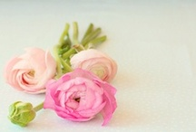 Fresh flowers everyday  - perfect