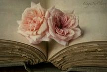 Treasures / by carol roux