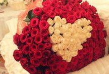 flowers    fiori / flowers    fiori