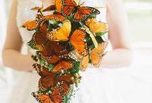 Flowers for Wedding    Fiori per Matrimonio / .