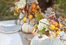 Fall  / Fall images, projects and décor ideas / by Tracy Askilsrud