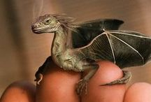 Dragons, Baby! / Just some great pictures of dragons. Fantasy is one of my favorite genres