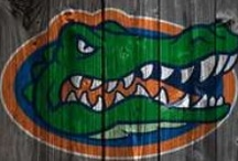 Go Gators! / by Jacque H.