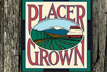 Signs of PlacerGROWN