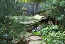 Garden / Outdoor living spaces.  / by Catherine Betz