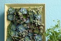 Naked DIY & Home / Fun ideas for DIY projects and your home #diy #decor #design #green #artsandcrafts #fun #recycle #nakedclean  http://www.naked-clean.com/  http://www.naked-clean.com/