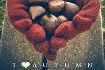 Autumn / Otoño