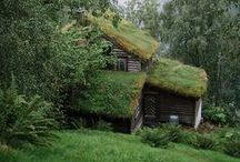 Earthships and hobbit holes / by Simon Buck