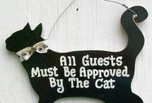 Must have for cat lovers / For all the crazy cat lovers of the world, a place where everything is dedicated to the cat!  Meow!