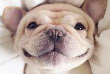 cheer up, life's short ;)