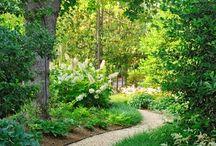 Secrets in my Dream Garden . / Outdoors
