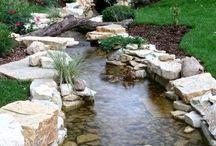 Water the Garden . / Gardening Outdoors