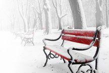 Snow Flake / Snow