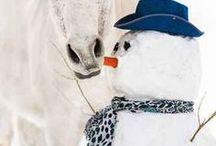 Animals ❤ SNOWMAN