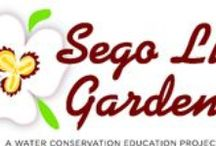 Sego Lily Gardens / Sandy's demonstration garden, Sego Lily, showcases many drought tolerant plants and offers tips on how to properly maintain a water-wise yard. LOCATION: 1472 East Sego Lily Drive (10200 South). Open MON-SAT from 8a.m. to 8p.m., April 15 - September 30.