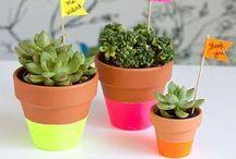 Recyclage - DIY / Stop au gaspillage : voici d'excellentes idées pour habiller votre jardin, patio, balcon, terrasse...