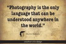 OlleyFin - Celri's Passion / One word: PHOTOGRAPHY