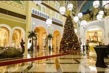 #movenpickXmas / During christmas time all our hotels are festively decorated. We would love to share the most beautiful #christmastree photos and invite you to share yours with us. / by Mövenpick Hotels & Resorts