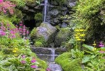 Great Landscaping and Gardening / A board dedicated to the most beautiful landscaping and gardening.