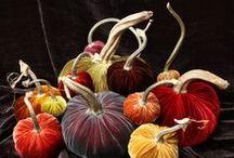 Halloween, pumpkins, food, treat bags, games