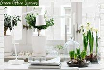 NTRLK OFFICE / NTRLK creëert met passie en toewijding exclusieve pot- en plantcombinaties die voor de ultieme sfeer en 'finishing touch' in uw kantoor en interieur zorgen, rekening houdend met uw wensen en mogelijkheden.