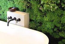 NTRLK BATH & SHOWER / GREEN & PURE