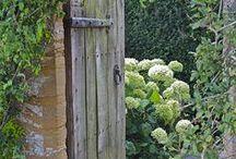 Gardens,flowers,pots,path / Zahrada,květiny,květináče,chodníky