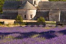 Provence / Cestování