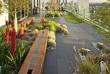 NTRLK ROOFTOP GARDENS & TERRACES / Rooftop Garden
