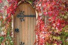 Door / Dveře