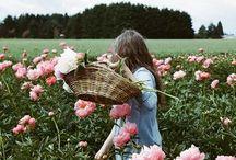 floral / by virginia jackson