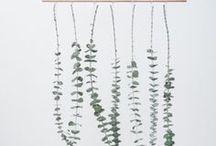 DIY – Eukalyptus