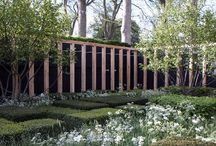 Garden design / by Sean Fagan