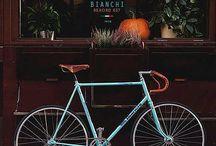 #fixie / Classic bicycles