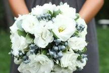 Bridal Bouquets / Bride bouquets, wedding flowers, boutonnieres and more for every colour scheme, style and budget.