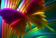 Colour   Meets  Imagination