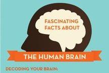 Brain Separation