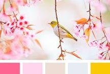 Inspiring Color Palette / #colors #colorful #pastel #palette #color #graphic
