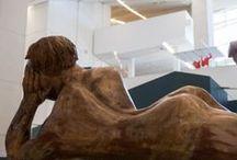 Making Of 'Auga Doce' / Montaxe das 700 pezas que compoñen a exposición 'Auga Doce' no Museo Centro Gaiás.