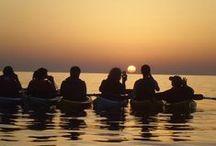 Sea kayaking fun at Odyssey / Sea kayaking fun at Odyssey