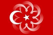 15 Temmuz Demokrasi Bayram'ı / Milli iradenin gücü // Darbe girişimi // Türkiye