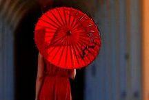 umbrella / umbrella, şemsiye