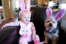Bebés y Animales! / Hermosos fotos, consejos y tips de la vida de los bebés con sus mascotas.