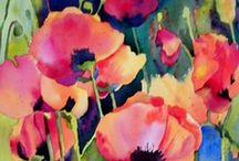 Flowers:  Poppies